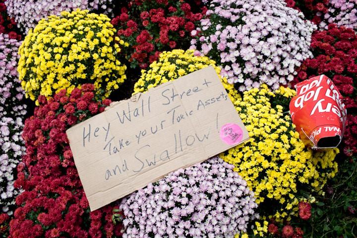 http://carlottazarattini.com/files/gimgs/th-33_occupy13.jpg