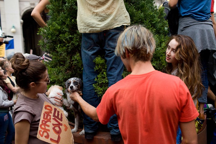 http://carlottazarattini.com/files/gimgs/th-33_occupy25.jpg